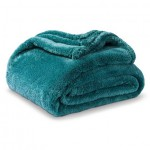 Teal Fuzzy Throw Blanket