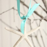 Starfish Ribbon Ornament Set