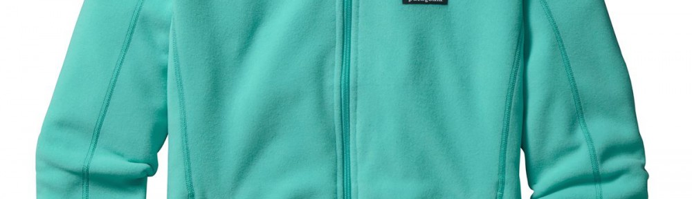 Patagonia Micro D Fleece Jacket in Howling Turquosie
