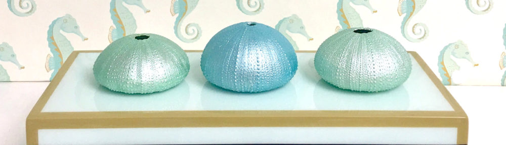Hand-Painted Natural Sea Urchins
