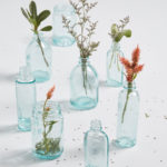 Varying Vessels Glass Vase Set